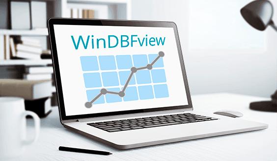 Windbfview - фото 4