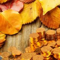 Как бюджетной организации эффективно освоить бюджет уже в сентябре?