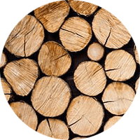 ЕГАИС Лес: древесина под контролем