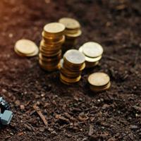 Кому и как платить земельный налог